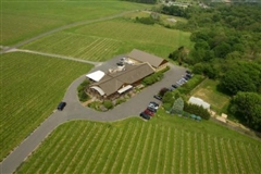 Macari Vineyards and Winery